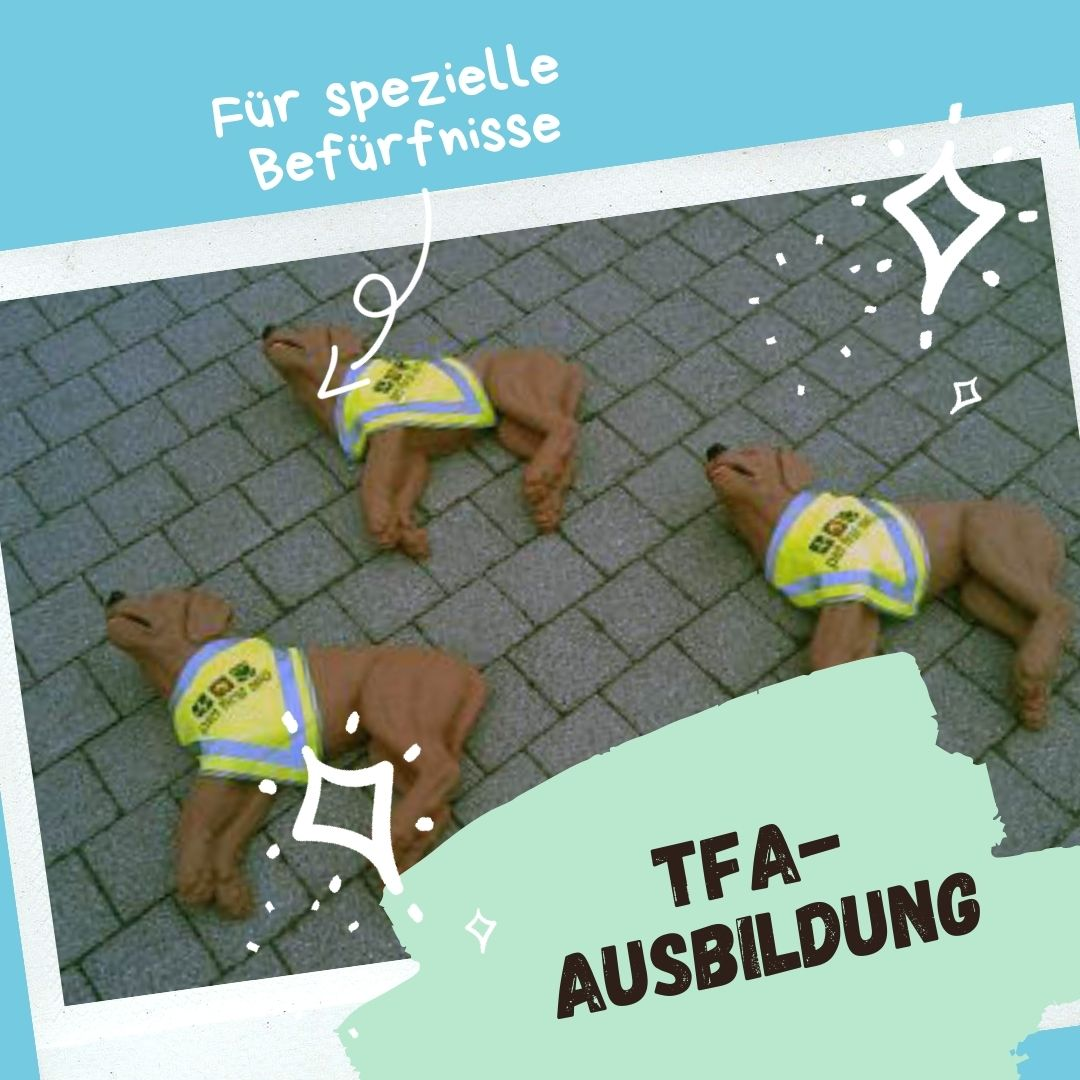 Light Green and Blue Beach Dog Animated Social Media Graphic (1)
